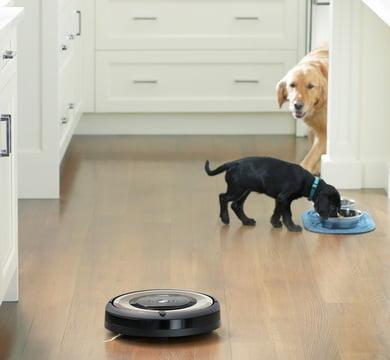 Уборка за домашними животными